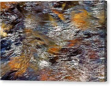 Pisgah Forest - Liquid Color Canvas Print