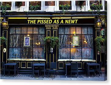 Newts Canvas Print - Pissed As A Newt Pub  by David Pyatt