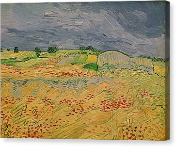 Cornfield Canvas Print - Plain At Auvers by Vincent Van Gogh