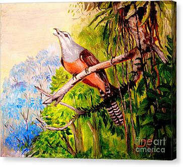 Canvas Print featuring the painting Plaintive Cuckoo by Jason Sentuf