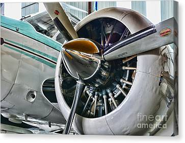 Plane First Class Canvas Print by Paul Ward