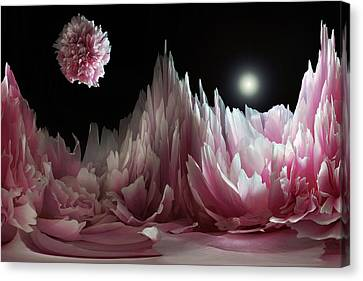 Planet Peony  Canvas Print by Terence Davis