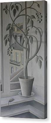 Plant In Window, Oil On Panel Canvas Print by Ruth Addinall