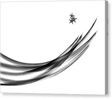 Plant Leaves And Starfish Canvas Print by Albert Koetsier X-ray