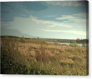 Plantations Canvas Print - Plantation At Willington Gravel Pits, Saplings And Pond by Litz Collection