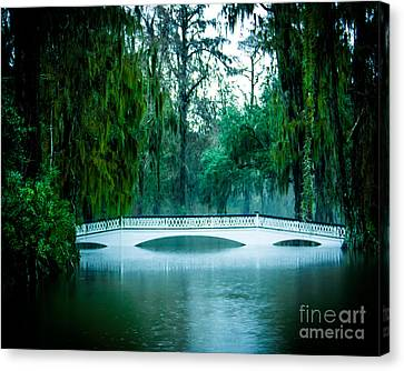 Plantation Bridge Canvas Print by Perry Webster