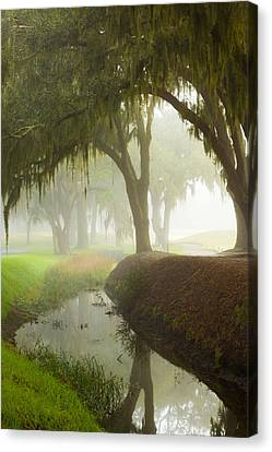 Plantation Canal Canvas Print by Barbara Northrup