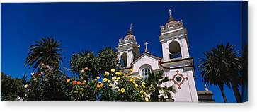 Plants In Front Of A Cathedral Canvas Print by Panoramic Images