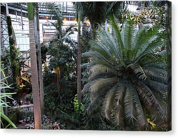 Plants - Us Botanic Garden - 011311 Canvas Print by DC Photographer