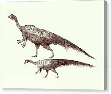 Plateosaurus Dinosaurs Canvas Print by Nemo Ramjet