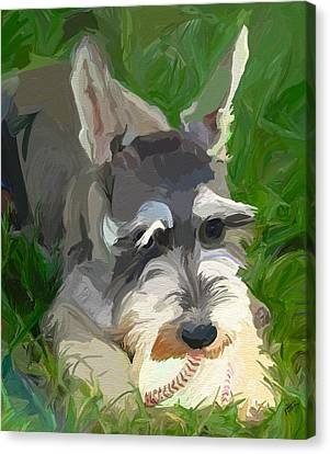 Play Ball Canvas Print by Patti Siehien