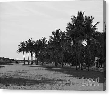 Playa Del Sur Canvas Print