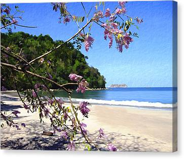 Playa Espadillia Sur Manuel Antonio National Park Costa Rica Canvas Print by Kurt Van Wagner