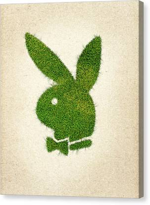 Playboy Grass Logo Canvas Print by Aged Pixel