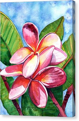 Playful Plumeria Canvas Print