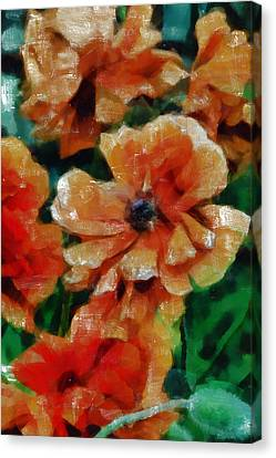 Flower Blooms Canvas Print - Playful Poppies 7 by Angelina Vick