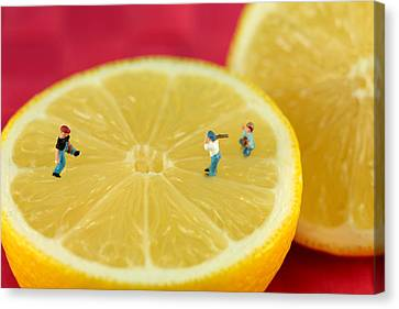 Sour Canvas Print - Playing Baseball On Lemon by Paul Ge