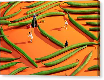 Playing Tennis Among French Beans Little People On Food Canvas Print by Paul Ge