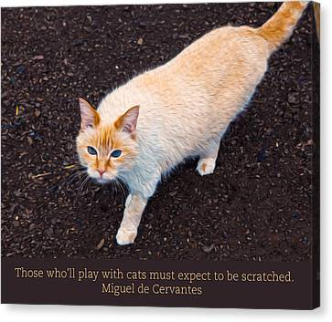 Playing With Cats Canvas Print by Omaste Witkowski