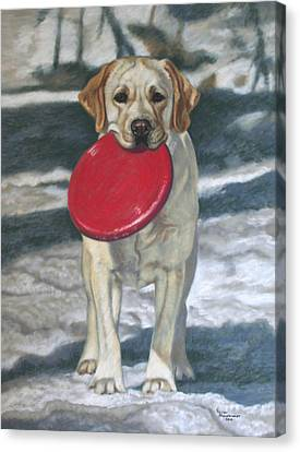 Please? Canvas Print by Debbie Stonebraker