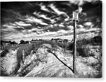 Please Keep Off Dunes Canvas Print by John Rizzuto