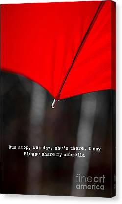 Please Share My Umbrella Canvas Print by Edward Fielding