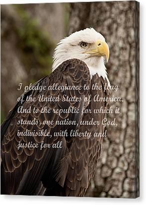 Pledge Of Allegiance Canvas Print by John Black