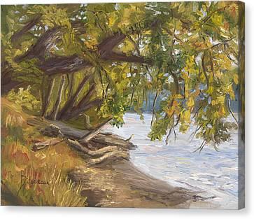 Plein Air - Chicopee River Canvas Print by Lucie Bilodeau