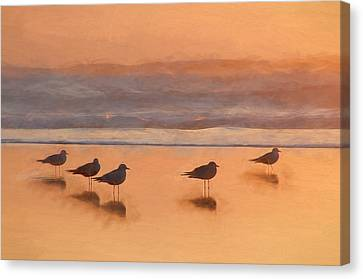 Plovers Reflecting Canvas Print by John K Woodruff