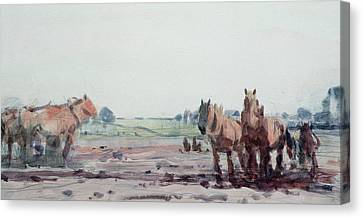 Plow Horses Canvas Print by Harry Becker