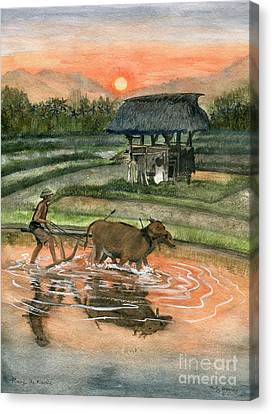 Plowing The Ricefield Canvas Print by Melly Terpening