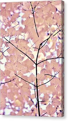 Plum Cream Leaves Melody Canvas Print by Jennie Marie Schell