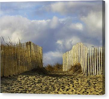 Canvas Print featuring the photograph Plum Island Fence by Betty Denise