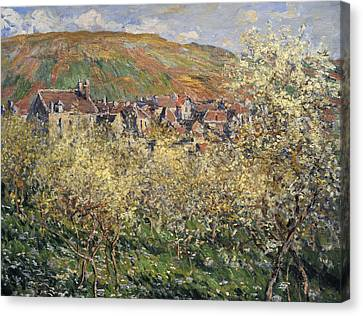 Plum Trees In Blossom At Vetheuil Canvas Print by Claude Monet