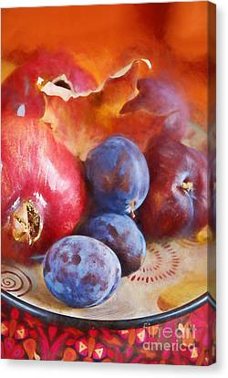 Plums And Pomegranate Canvas Print by HD Connelly