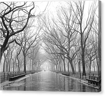Canvas Print featuring the photograph New York City - Poets Walk Central Park by Dave Beckerman