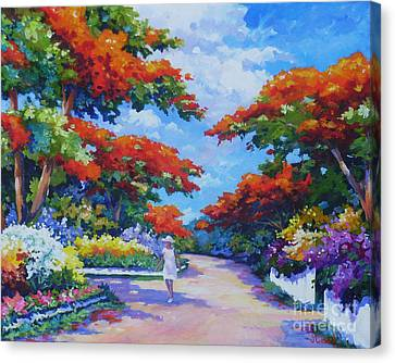 Poinciana Paradise  20x16 Canvas Print