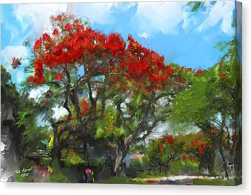 Canvas Print featuring the painting Poinciana Trees Of Coral Gables by Ted Azriel