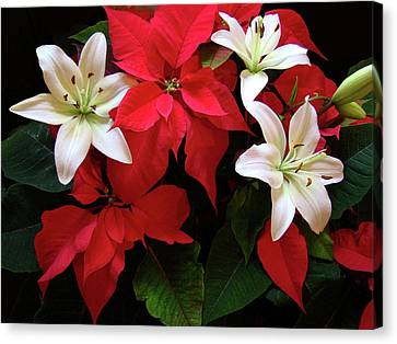 Poinsettia And Lilies Canvas Print by Sandy Keeton