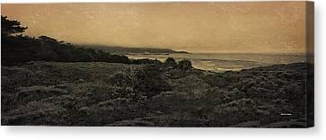 Point Lobos - An Antique Take Canvas Print by Angela A Stanton