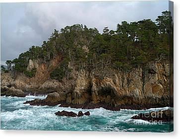 Point Lobos Coastal View Canvas Print