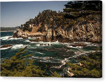 Canvas Print featuring the photograph Point Lobos by Lee Kirchhevel