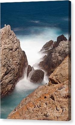 Point Lobos Number Two Canvas Print by Catherine Lau