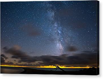 Point Pelee Milky Way Canvas Print by Cale Best