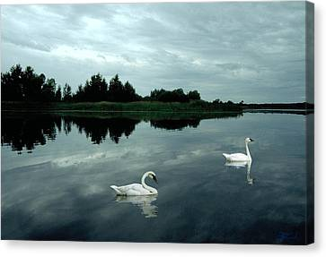 Point Serenity Canvas Print