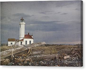 Nosyreva Canvas Print - Point Wilson by Elena Nosyreva