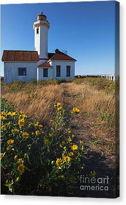 Point Wilson Lighthouse Canvas Print by Mike  Dawson