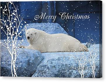 Polar Bear Christmas Greeting Canvas Print