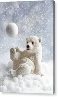 Toy Animals Canvas Print - Polar Bear Decoration by Amanda Elwell