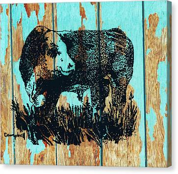 Canvas Print featuring the photograph Polled Hereford Bull 23 by Larry Campbell